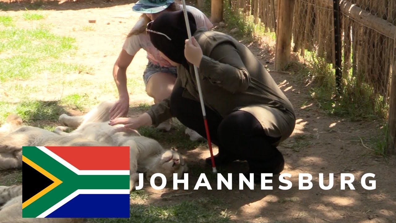 A thumbnail for City Tours, Safari Trip and Navigating: Johannesburg Episode 1 Part 2. An image of Mona petting a young lion with the aid of a safari guide. Superimposed on the image is the South African Flag.