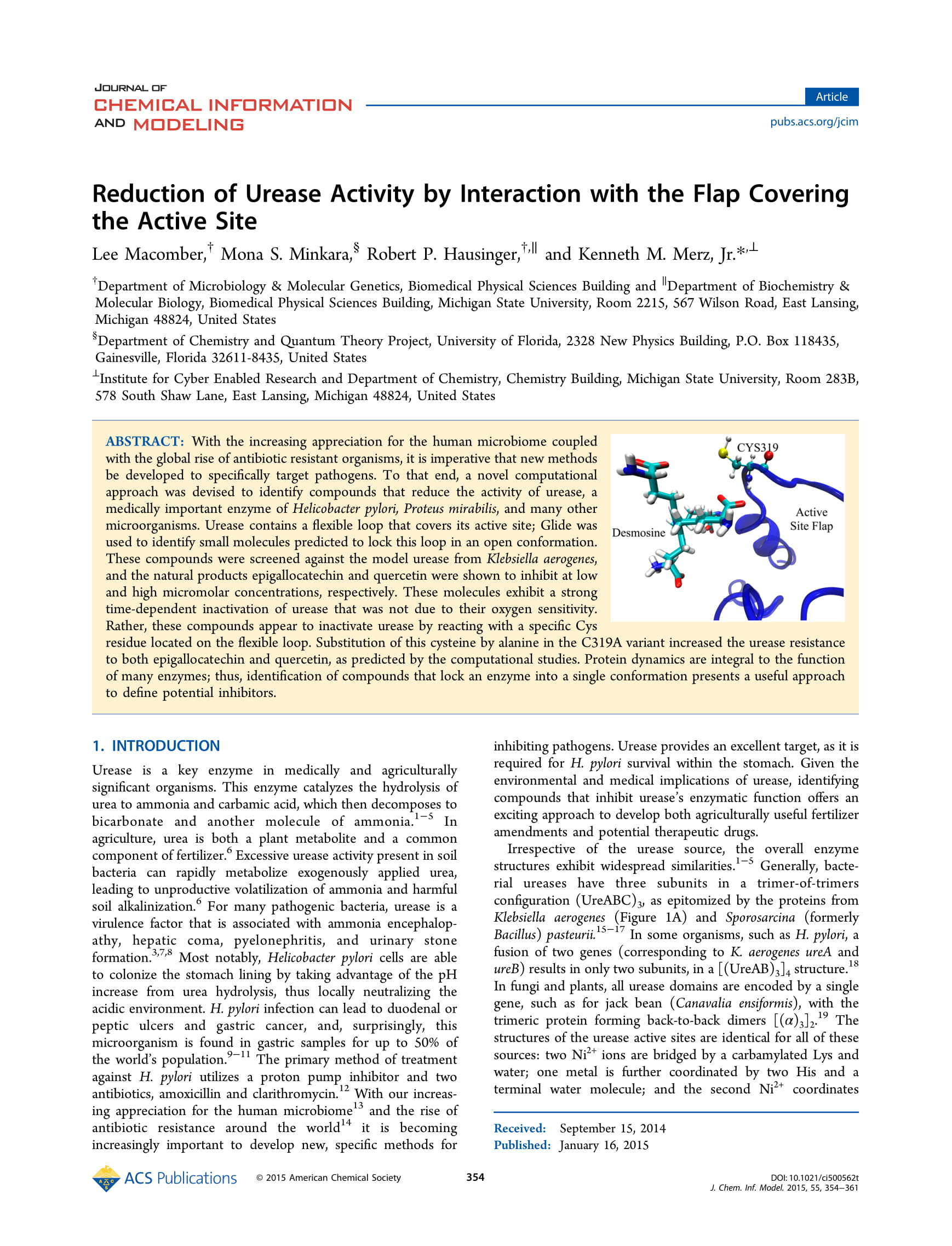 Reduction of Urease Activity by Interaction With the Flap Covering Active Site